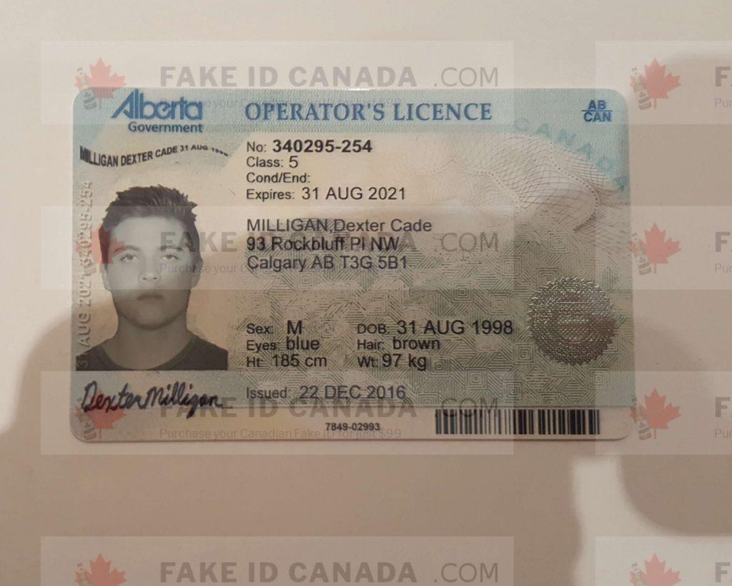 Alberta Fake ID
