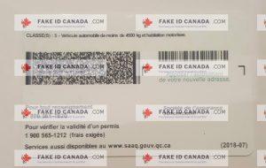 Quebec - com Fake Fakeidcanada Id 79